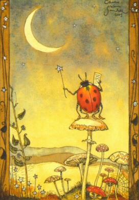 LBM - Lady Bug on Moon