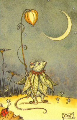 MFM - Mouse Fairy / Moon